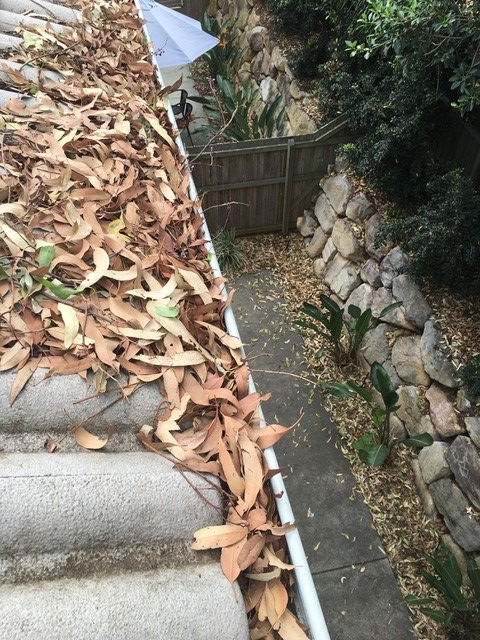 1300 Cleaning Group gutter cleaning