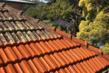 1300 Cleaning Group Roof Cleaning